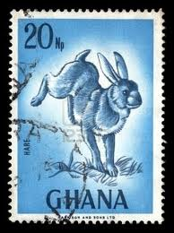 rabbit stamp ghana